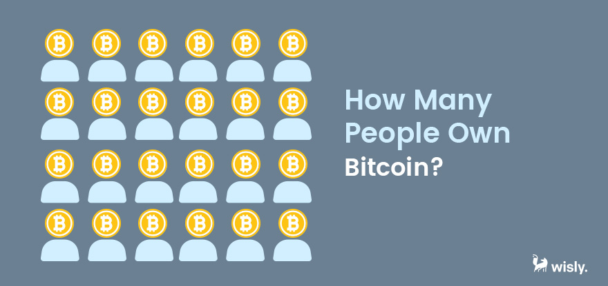 How many people own Bitcoin - Cryptocurrency Portfolio Wisly